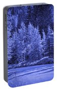Blue Vail Portable Battery Charger