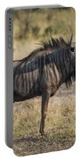 Blue Wildebeest Standing On Savannah Staring Ahead Portable Battery Charger
