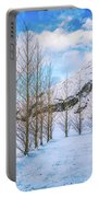 Blue Winter Sky Portable Battery Charger
