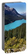 Blue Wolf In The Valley Portable Battery Charger