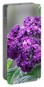 Blue Wonder Heliotrope Portable Battery Charger