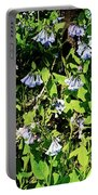 Bluebell 22 Portable Battery Charger