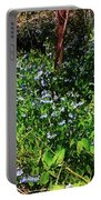 Bluebell 23 Portable Battery Charger
