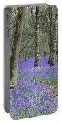 Bluebell Wood Effingham Surrey Uk Portable Battery Charger
