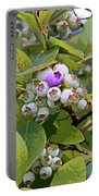 Blueberries On The Vine 7 Portable Battery Charger