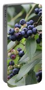 Blueberry Bounty Portable Battery Charger