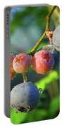 Blueberry Morning Portable Battery Charger