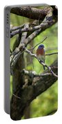 Bluebird In A Tree Portable Battery Charger