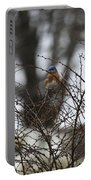 Bluebird In Briars Portable Battery Charger