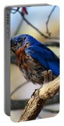 Bluebird In May Portable Battery Charger