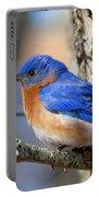 Bluebird Vibrance Portable Battery Charger