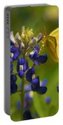 Bluebonnet And Butterfly Portable Battery Charger
