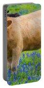 Bluebonnet Cow Portable Battery Charger