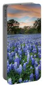 Bluebonnets On A Spring Evening 403-1 Portable Battery Charger