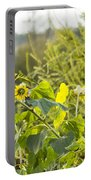 Bluejay And Sunflowers Portable Battery Charger