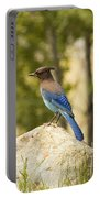 Bluejay Pondering Portable Battery Charger