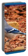 Bluejay Profile Portable Battery Charger