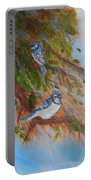 Bluejays Portable Battery Charger