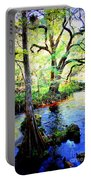 Blues In Florida Swamp Portable Battery Charger