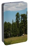 Bluff Lake Ca 7 Portable Battery Charger
