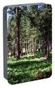 Bluff Lake Ca Fern Forest 1 Portable Battery Charger