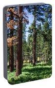 Bluff Lake Ca Fern Forest 3 Portable Battery Charger