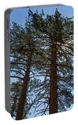 Bluff Lake Ca Through The Trees 3 Portable Battery Charger