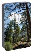 Bluff Lake Ca Through The Trees 4 Portable Battery Charger