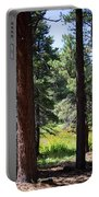 Bluff Lake Ca Through The Trees 7 Portable Battery Charger