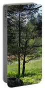 Bluff Lake Ca Through The Trees 8 Portable Battery Charger