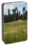 Bluff Lake Ca Wild Flowers 4 Portable Battery Charger