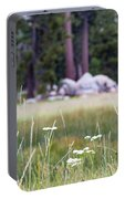 Bluff Lake Ca Wild Flowers 9 Portable Battery Charger