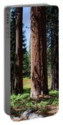 Bluff Lake Forest 3 Portable Battery Charger