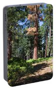 Bluff Lake Forest 6 Portable Battery Charger
