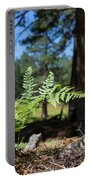 Bluff Lake Forest Foliage1 Portable Battery Charger
