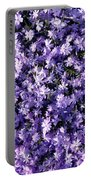 Bluish Carpet Portable Battery Charger