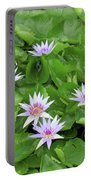 Blumen Des Wassers - Flowers Of The Water 22 Portable Battery Charger