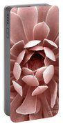 Blush Pink Succulent Plant, Cactus Close Up Portable Battery Charger