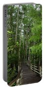 Boardwalk Through The Bald Cypress Strand Portable Battery Charger