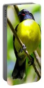 Boastful Bird Portable Battery Charger