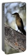Boat - Tailed Grackle  Portable Battery Charger