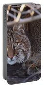 Bobcat Portable Battery Charger