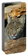 Bobcat Hiding In A Log Portable Battery Charger