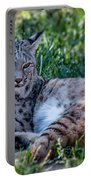 Bobcat In The Grass 2 Portable Battery Charger