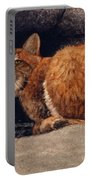 Bobcat On Ledge Portable Battery Charger