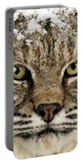 Bobcat Whiskers Portable Battery Charger