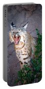Bobcat Yawn Portable Battery Charger