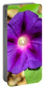 Bohemian Morning Glory Portable Battery Charger
