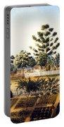 Bois De Fleche Plantation Louisiana 1861 Portable Battery Charger