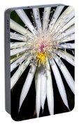Bold Cactus Flower Portable Battery Charger